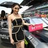 亚洲GT最惊艳赛车宝贝Rose